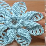 Crochet Folded Petal Flower – Video Tutorial