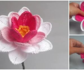 Water Lily Video Tutorial