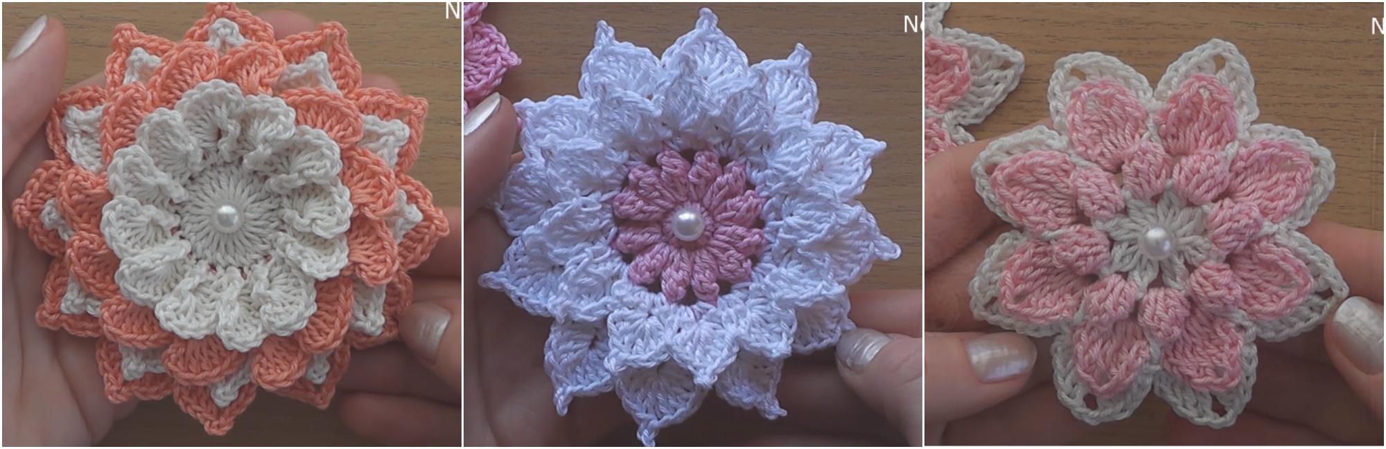 3 Beautiful Flowers Pretty Ideas