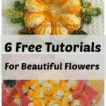6 Beautiful flowers for your decorations