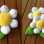 Crochet Soft Daisy