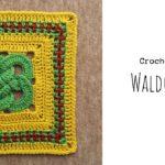 Crochet Waldo's Puzzle