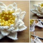 Crochet Water Lilly