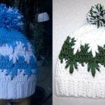 Frozen Winter Hat